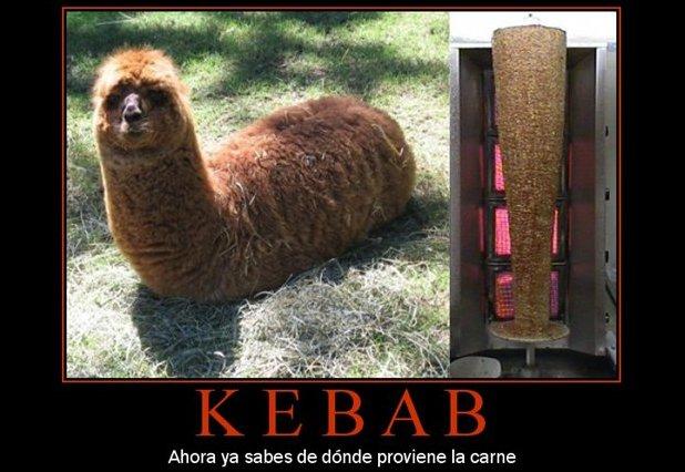 Humor gráfico en la cocina: kebab