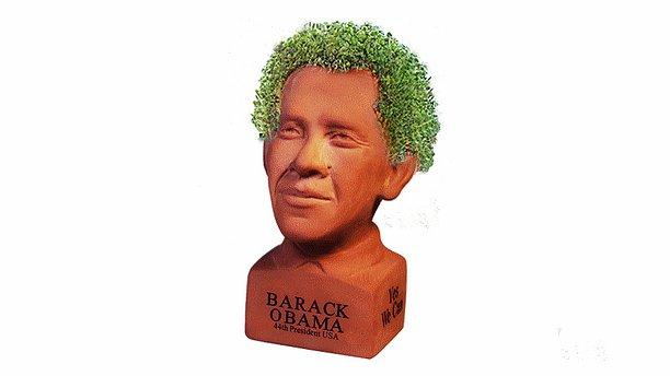 Busto de Obama con semillas de Chía