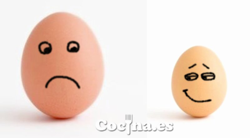 Huevo grande y huevo pequeño