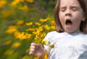 Remedios contra la alergia