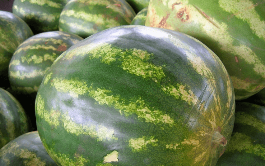 La sandía, una de las frutas de verano por excelencia