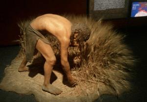 Hombre Neolitico - Agricultura