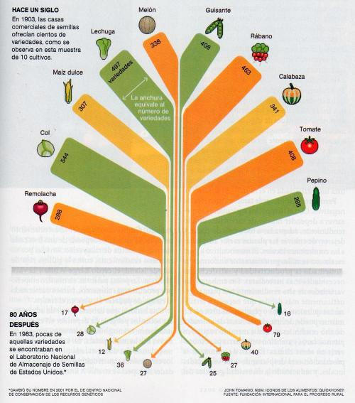 Infografía de la extinción de frutas y verduras en EE.UU.