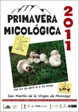 wpid-jornadas-micologicas-de-primavera.jpg