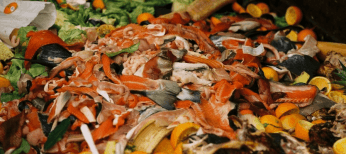 desperdicios comida