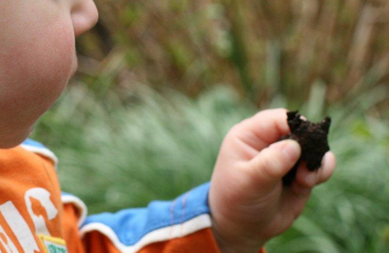niño comiendo tierra