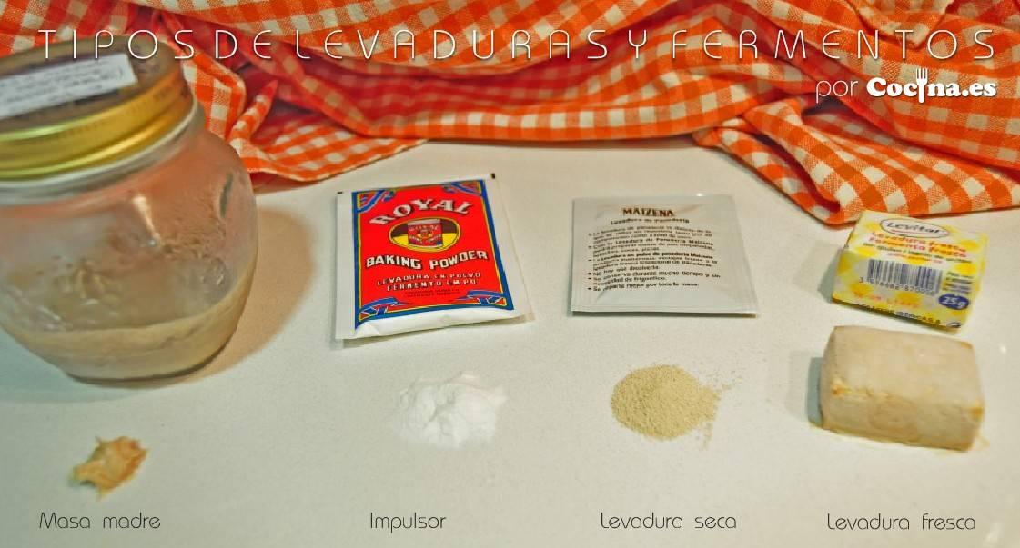 Levaduras, masa madre y fermento