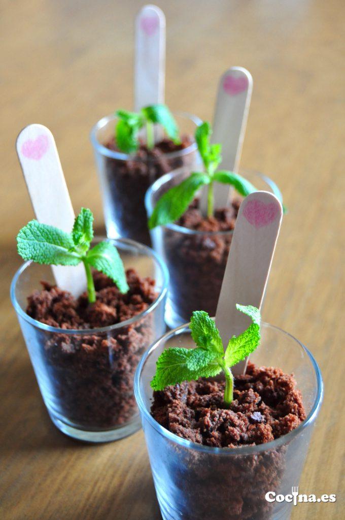 Macetas de hierbabuena con bizcocho de chocolate