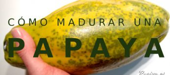 Cómo madurar una papaya