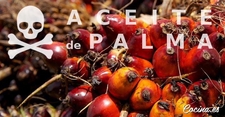 Aceite de Palma - Las 10 Verdades