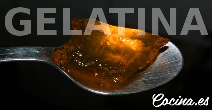 Qué contiene la Gelatina - Gelatina Propiedades